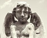 Querubim com estátua de asas. — Foto Stock