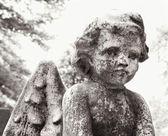 Estátua de anjo em cemitério — Foto Stock
