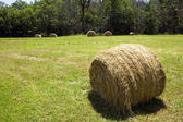 Hay bale in field. — Stock Photo