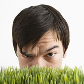Suspicious man behind grass. — Stock Photo