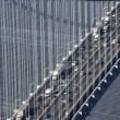 Verrazano-Narrow's Bridge. — Stock Photo