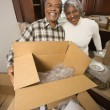 Stock Photo: Mature couple moving.