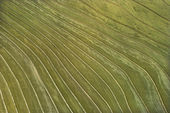 Terraced farming. — Stock Photo
