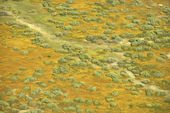 Aerial prairie landscape. — Stock Photo