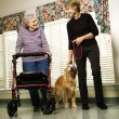 Foto de Stock  : Woman in assisted living.
