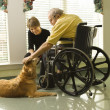 Stock Photo: Man in wheelchair with dog.