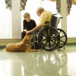 Elderly Man with Woman Petting Dog — Stockfoto