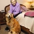 Mature woman with dog. — Stock Photo