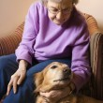 Mature woman petting dog. — Stock Photo