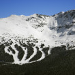 Ski resort trails on mountain. — Stockfoto #9367903