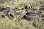 Neumáticos abandonados en el campo. — Foto de Stock