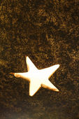 Gloeien ster. — Stockfoto