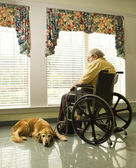 Elderly Man in Wheelchair and dog — Stockfoto