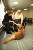 Homem idoso com cão de carícias de mulher — Foto Stock