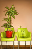 Two Green Plastic Chairs with Plants — Stock Photo