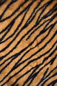 Tiger print carpet. — Stock Photo