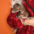 Man holding Chinese Crested dog. - Stock Photo