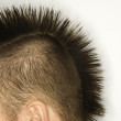Caucasian man with mohawk. — Stock Photo #9427991