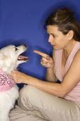 женщина выговаривал белая собака. — Стоковое фото