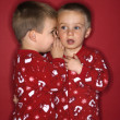 Stock Photo: Boy twin brothers whispering.