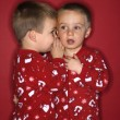 Stockfoto: Boy twin brothers whispering.
