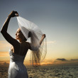 Bride holding out veil on beach. — Stockfoto