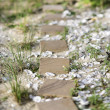 Stepping stone pathway. - Stock Photo