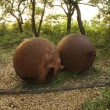 Stock Photo: Two rusty metal balls.