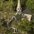 Church aerial in trees. - Stock Photo