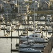 Coastal marina. — Stock Photo