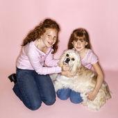 Holky drží pes kokršpaněl. — Stock fotografie