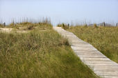Wooden access pathway to beach. — Stock Photo