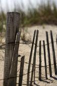 Fence on sand dune. — Stock Photo