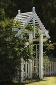 Arbor with rose bush. — Stock Photo