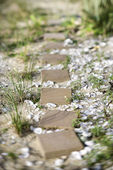 Stepping stone pathway. — Stock Photo