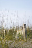 Wooden fence on beach. — Stock Photo
