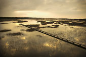 Walkway over marsh. — Stock Photo