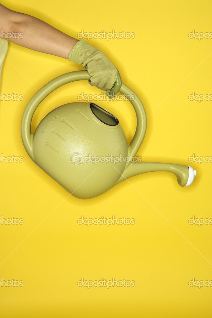 Young adult female Caucasian holding watering can.  Stock Photo #9431684