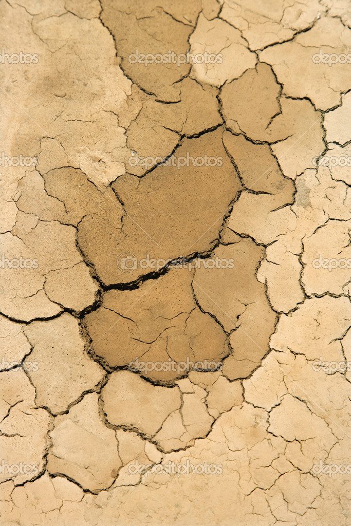 Close-up of dry, cracked dirt. — Stock Photo #9432181