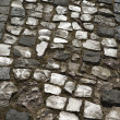 Stone inlayed street. — Stock Photo