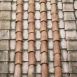 Rooftop clay terracotta shingles. — Photo