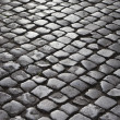 Cobblestone street. — Stock Photo