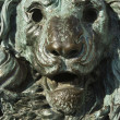 Bronze lion statue. — Stock Photo