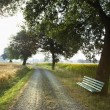 Bench and Gravel Road in the Country - Foto Stock