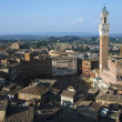 Piazza del Campo — Stock Photo