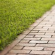 Stock Photo: Red Brick Walkway