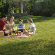 图库照片: Family having picnic.