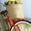 Bike with flowers. — Stock Photo