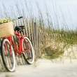 Stock Photo: Bicycle with flowers.