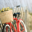 Bicycle with flowers. — Stock Photo